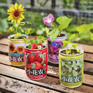 Small flower farmer can head flower can creative Mini germination potted green plant kindergarten plant seeds for children