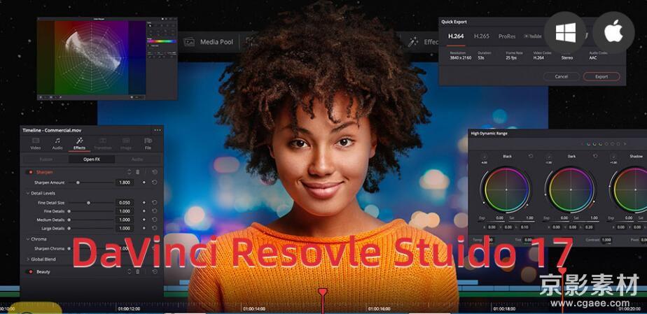 达芬奇调色剪辑软件专业版-DaVinci Resolve Studio 17.0 Win/Mac 中文英文版