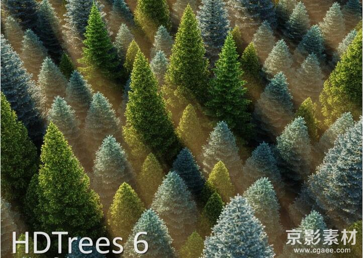 HD Trees for C4D-188棵景观树木Cinema 4D模型C4D模型