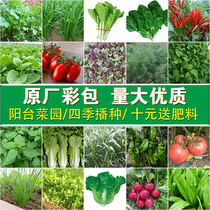 The Four seasons sowing the seed vegetable terrace potted farm garden vegetables seeds