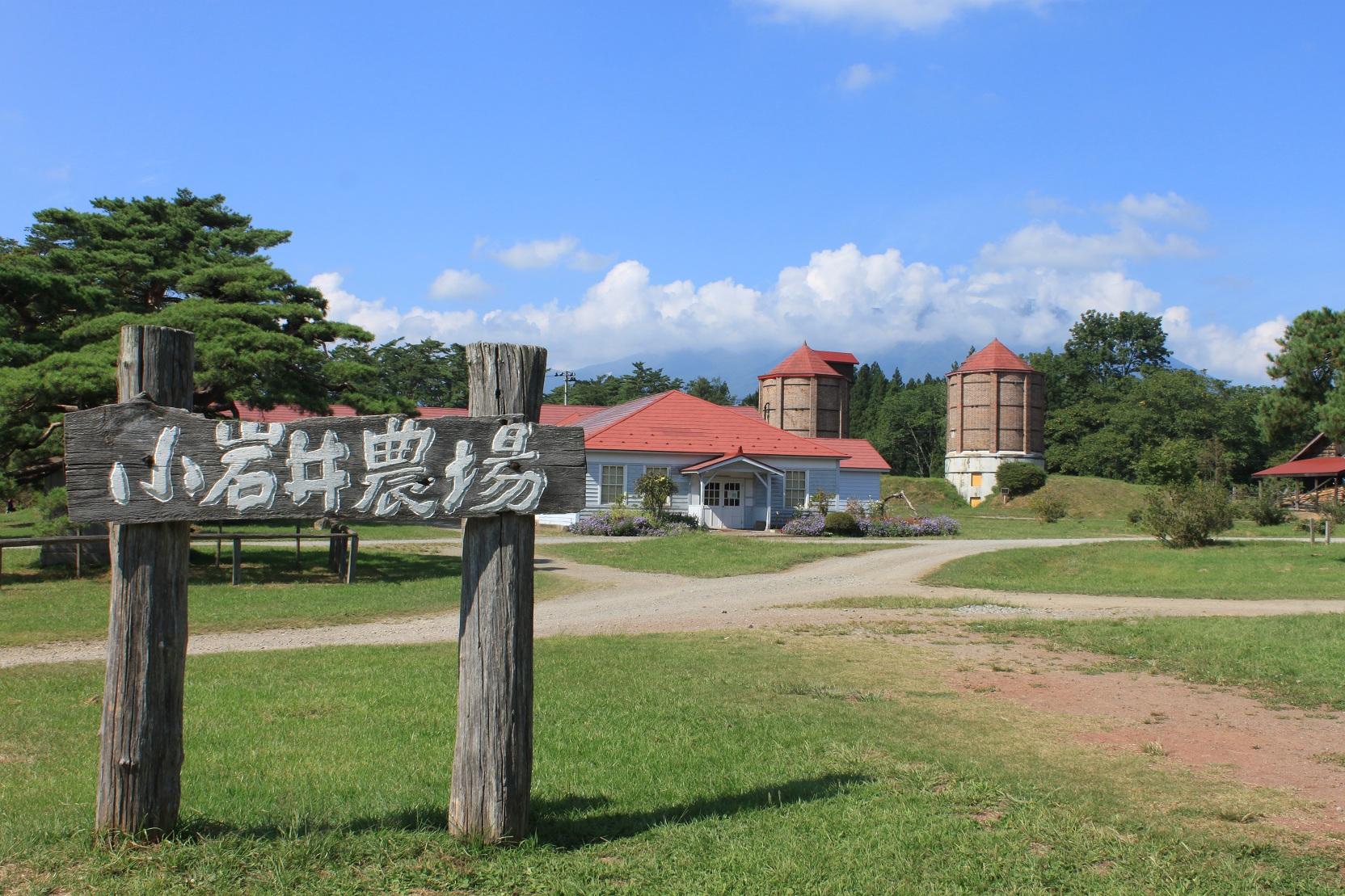 在日本的岩手县小岩井农场看雪