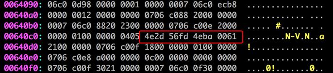 以16进制显示的memory dump