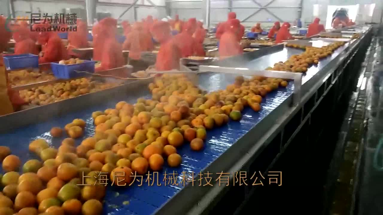 Customized automatic stainless steel canned pineapple food production line