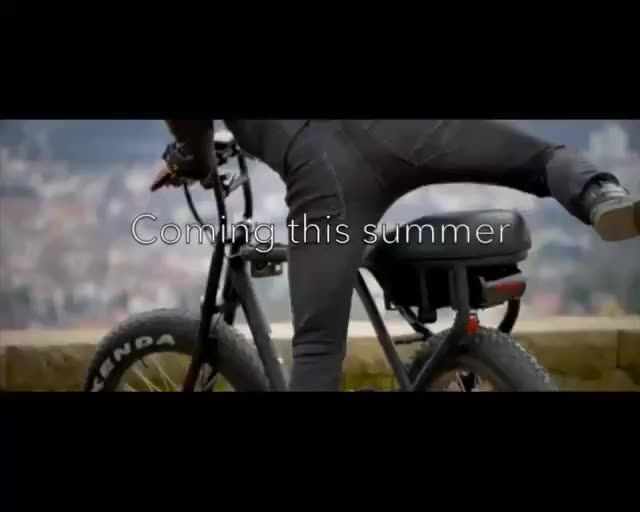 China EN-15194 20*4.0 fat tire electric bicycle 36v250w 48v250w motor