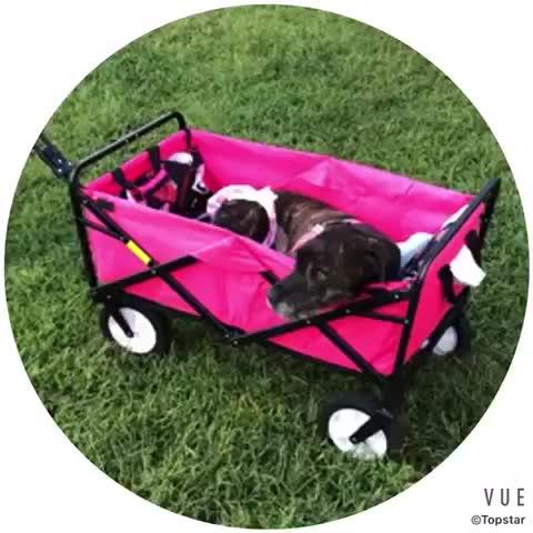 भारी शुल्क कई पालतू जानवर तह उपयोगिता वैगन बगीचा गाड़ी शॉपिंग छोटी गाड़ी