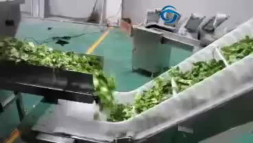Automatic dried mixed vegetables 1kg packing machine factory price