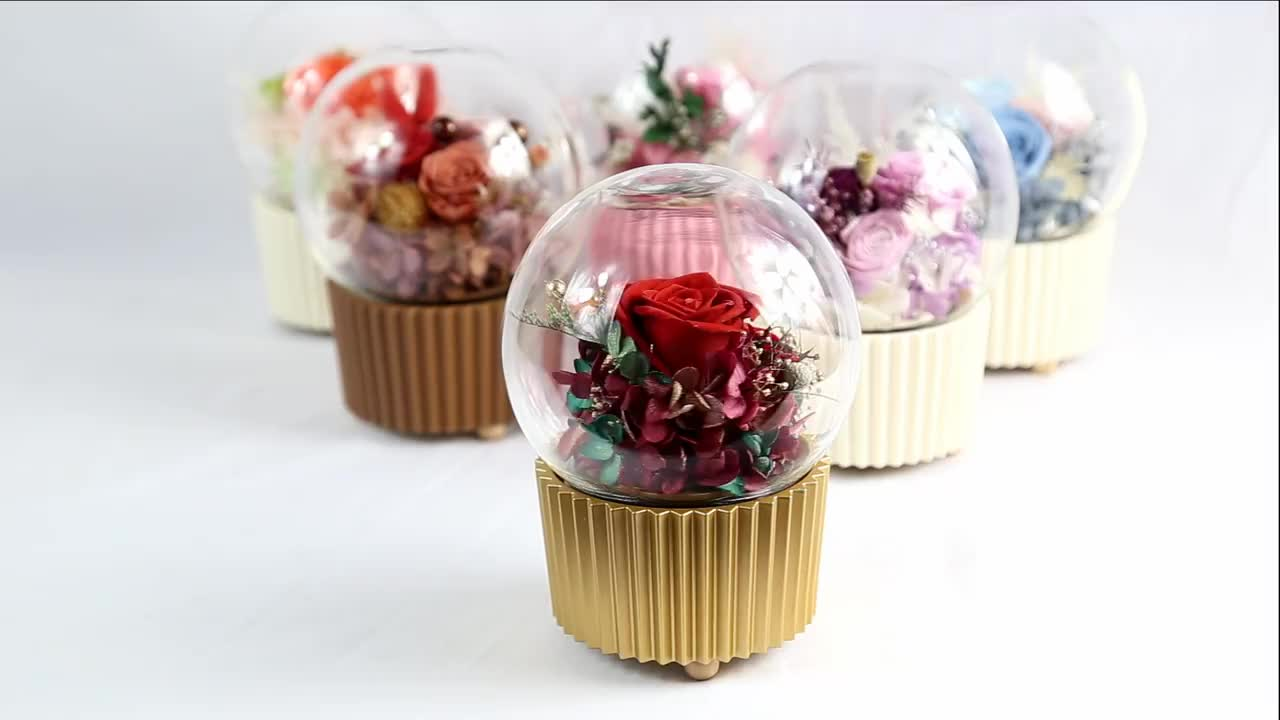 Preserved Rose In Music Glass Dome With Gift Box