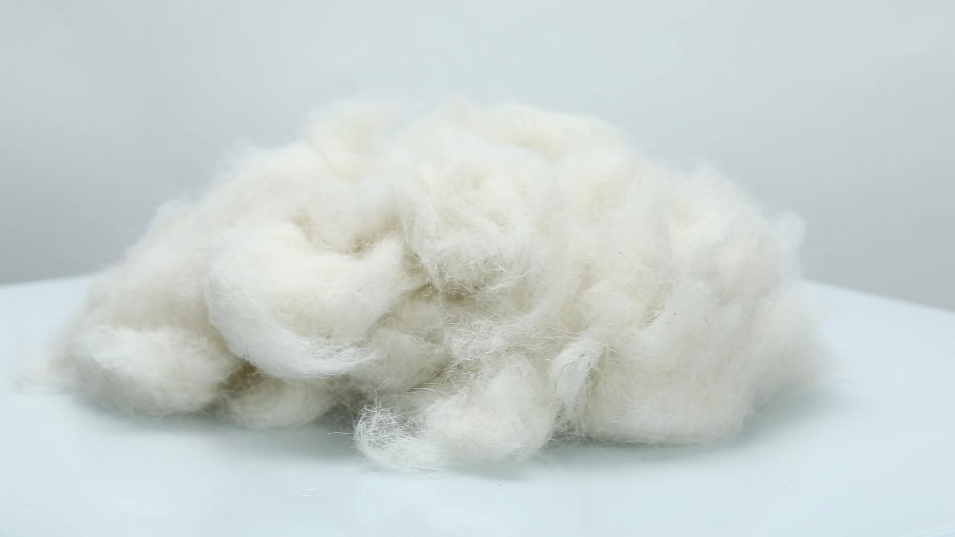 25-26mic, 30-40mm Carded Sheep Wool Waste Wool Noils for Carpet Yarn and Felt