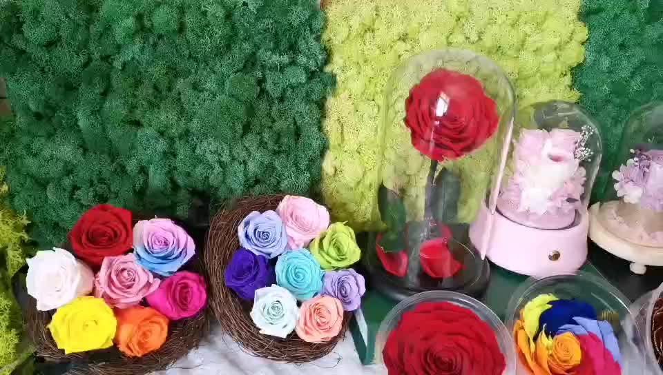 China factory supply 5-6cm Diy Material Immortal Natural Long lasting preserved flowers rose