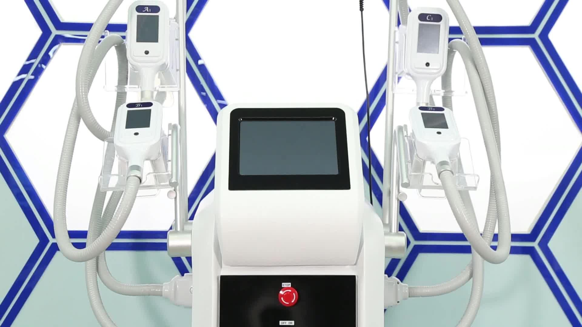 New style RF vacuum slimming fat removal multifunction cryolipolysis machine with 4 treatment handle