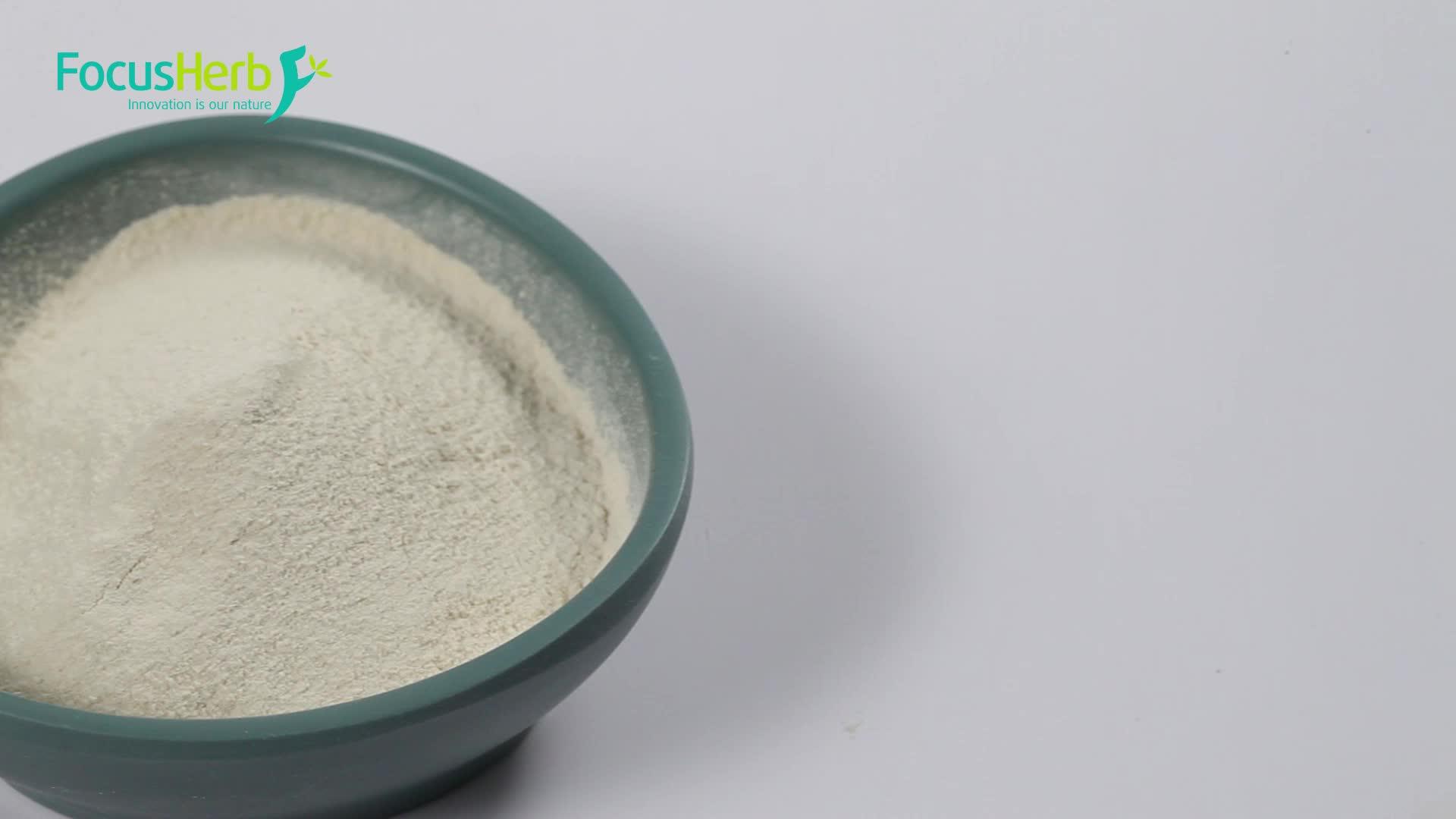 FocusHerb 100% الطبيعية العضوية البازلاء عزل مسحوق بروتين