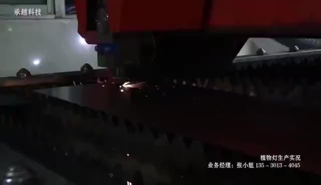 40W Merah dan Biru Yang Sesuai dengan Pertumbuhan Tanaman Lampu LED Sumber Cahaya Bunga Dalam Ruangan Sayuran Penanaman Lampu Produsen Grosir