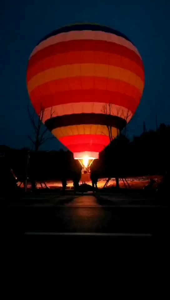 Flying advertising hot air balloon for sale