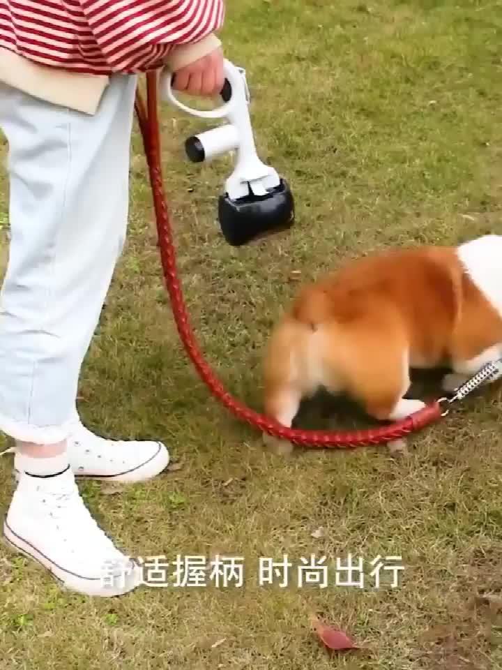 New design Pet Portable 2-in-1 Pooper Scooper with Waste Bag Long Handle Pet Waste Bag Holder Poop Scoop for Dogs Cat