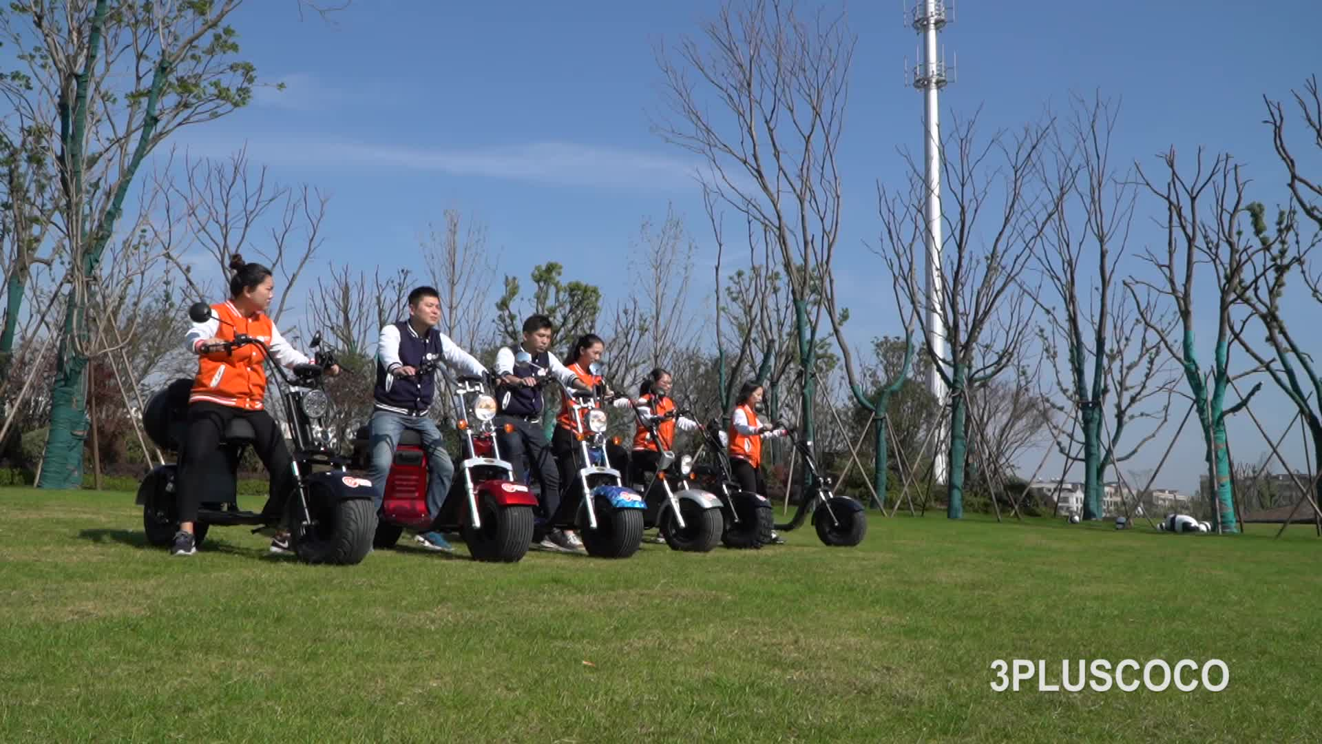 1500 w citycoco 60 V 20AH bateria scooter elétrico com grande pneu removível