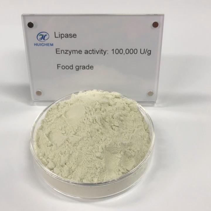 ISO Bán Buôn Thực Phẩm Lớp Lipase Enzyme Bột