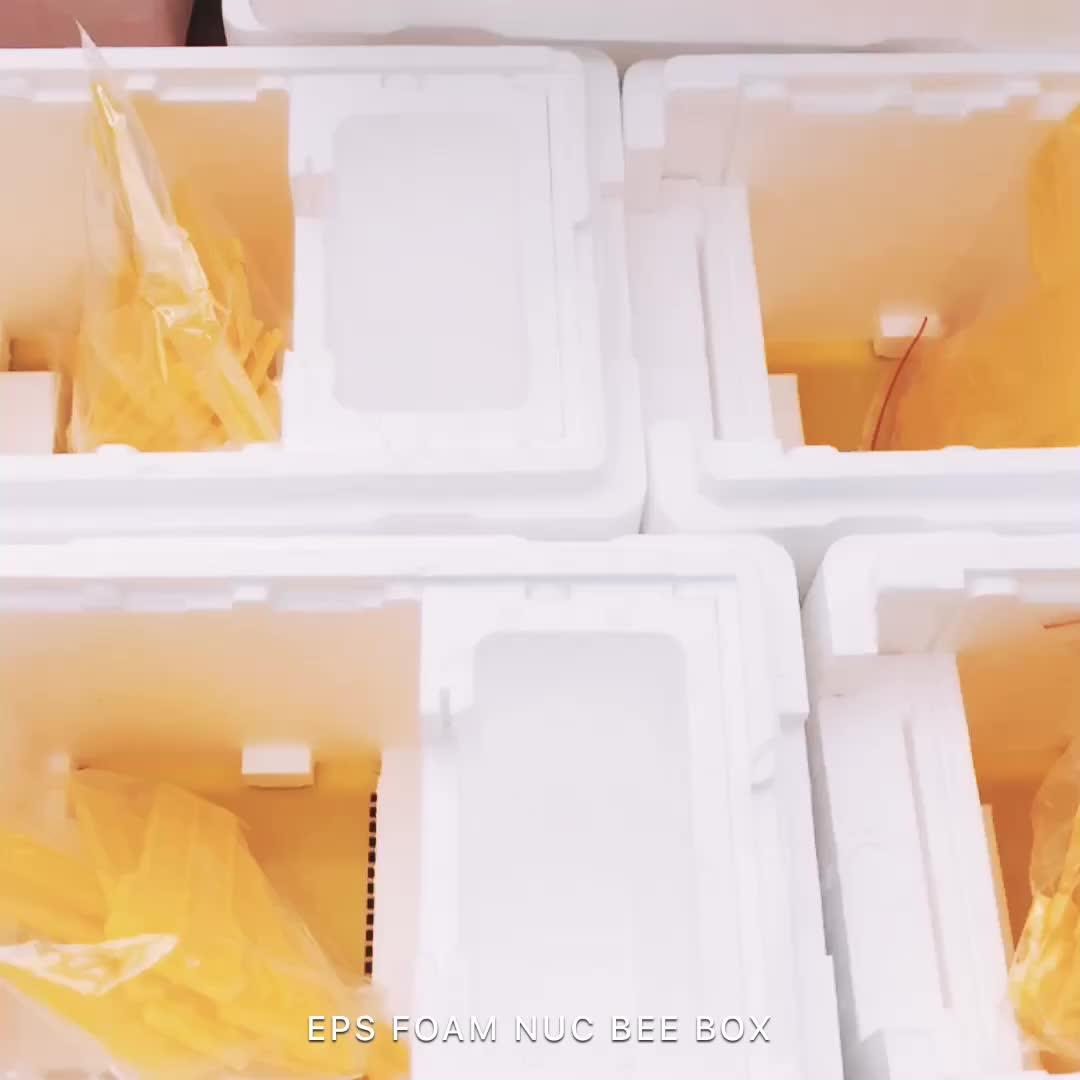 Apidea Çiftleşme Nuc arı kovanı satılık mini köpük polistiren arı kutusu arıcılık başlangıç kiti ESP çiftleşme arı kutusu