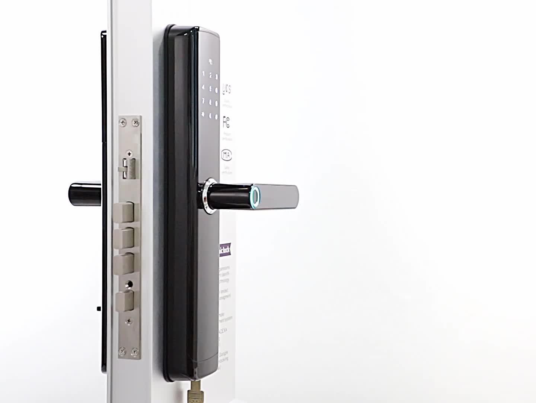 In lega di zinco serratura della porta digitale di sblocco cinque in uno di sblocco, supporto Alexa a distanza bluetooth unlock