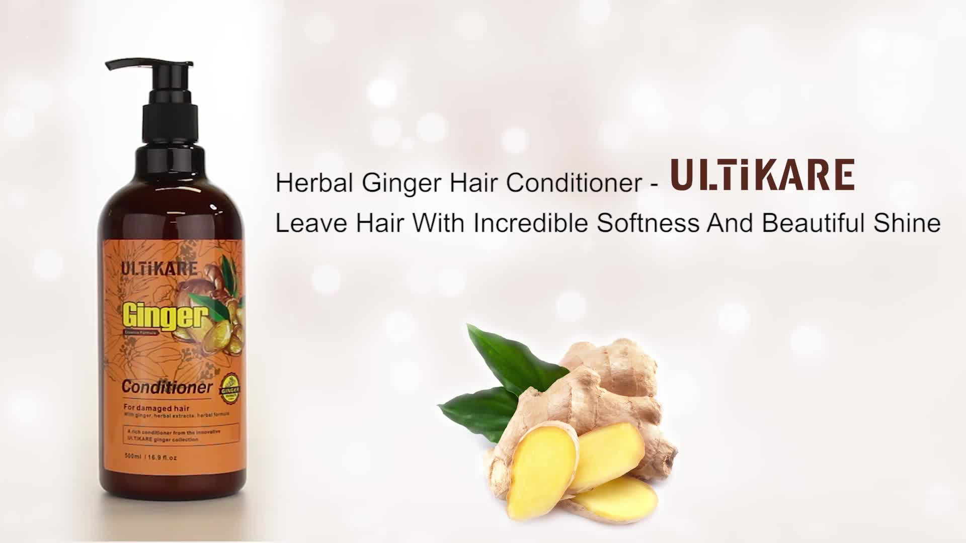 Wholesale best moisturizing hair care products ginger organic conditioner