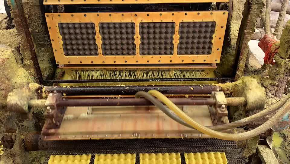 1000 pcs/h เอาต์พุตเยื่อกระดาษแม่พิมพ์เครื่องถาดไข่ผลิต