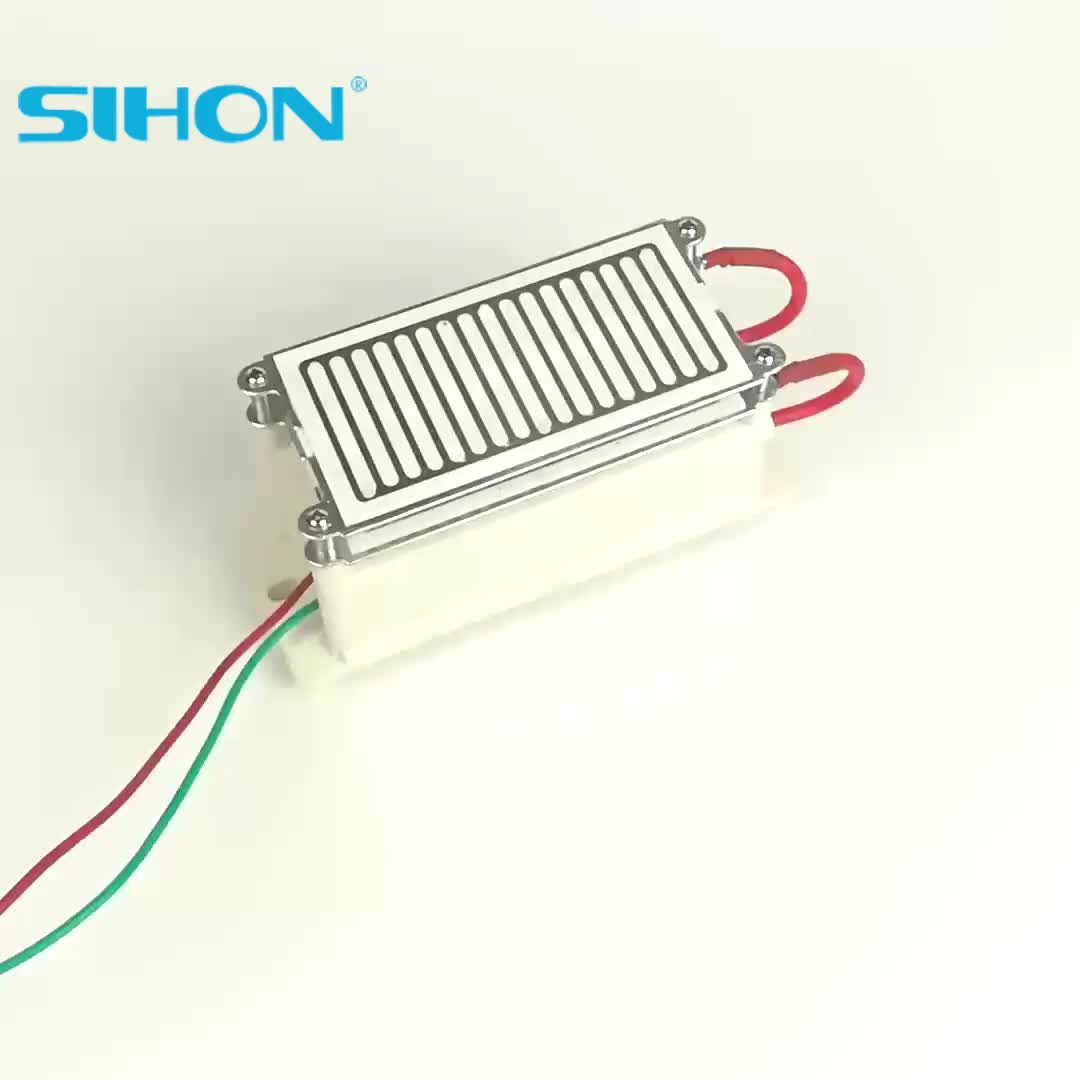 New Type 16g/h Stainless Steel Ozone Plates with Circuit for Ozone Generator for Ozone Generator Used In Household