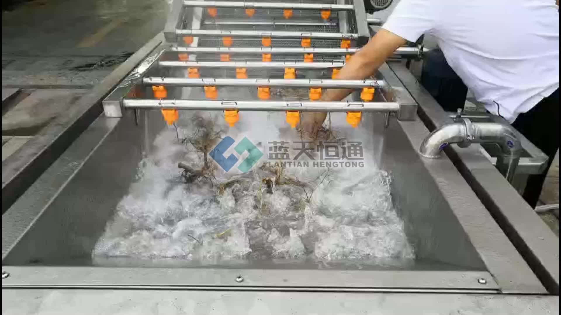 Bolha de ar de girassol máquina de lavar roupa máquina de limpeza de sementes de pêra espinhosa