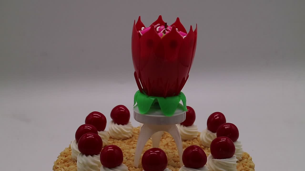 Edible birthday candle/lotus flower fireworks birthday candle