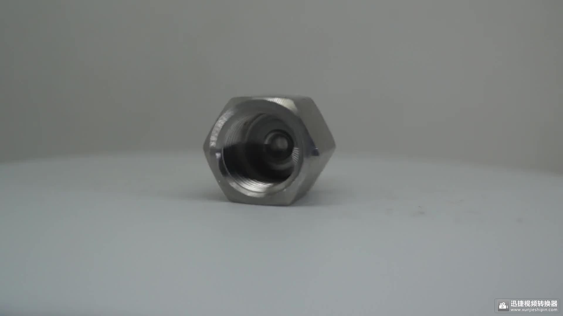 उच्च गुणवत्ता वाले स्टेनलेस स्टील 304 हाइड्रोलिक नली फिटिंग