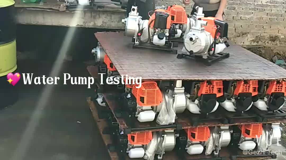 2019 New Product Water Pump Professional Robin Water Pump