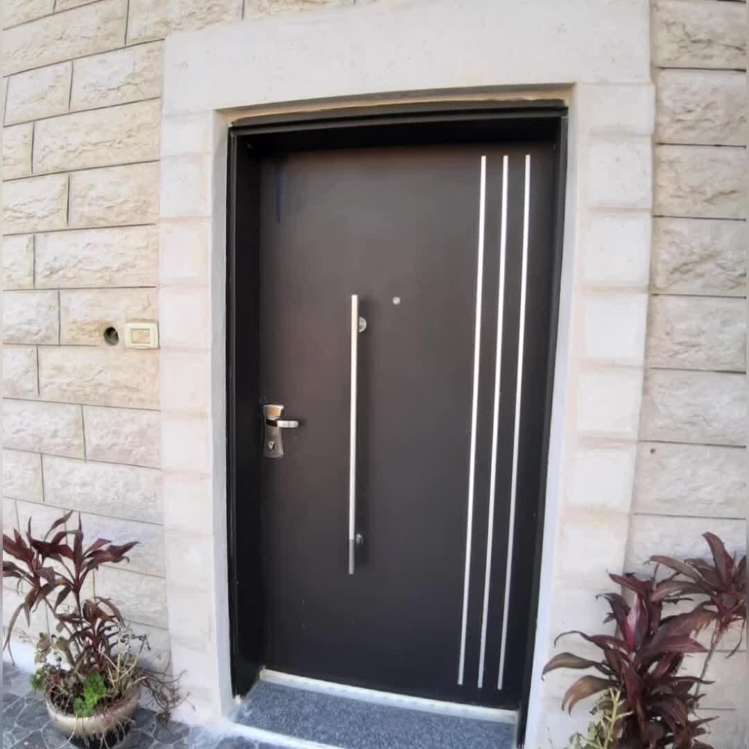 Israel Interior Steel Doorin High Stable Quality