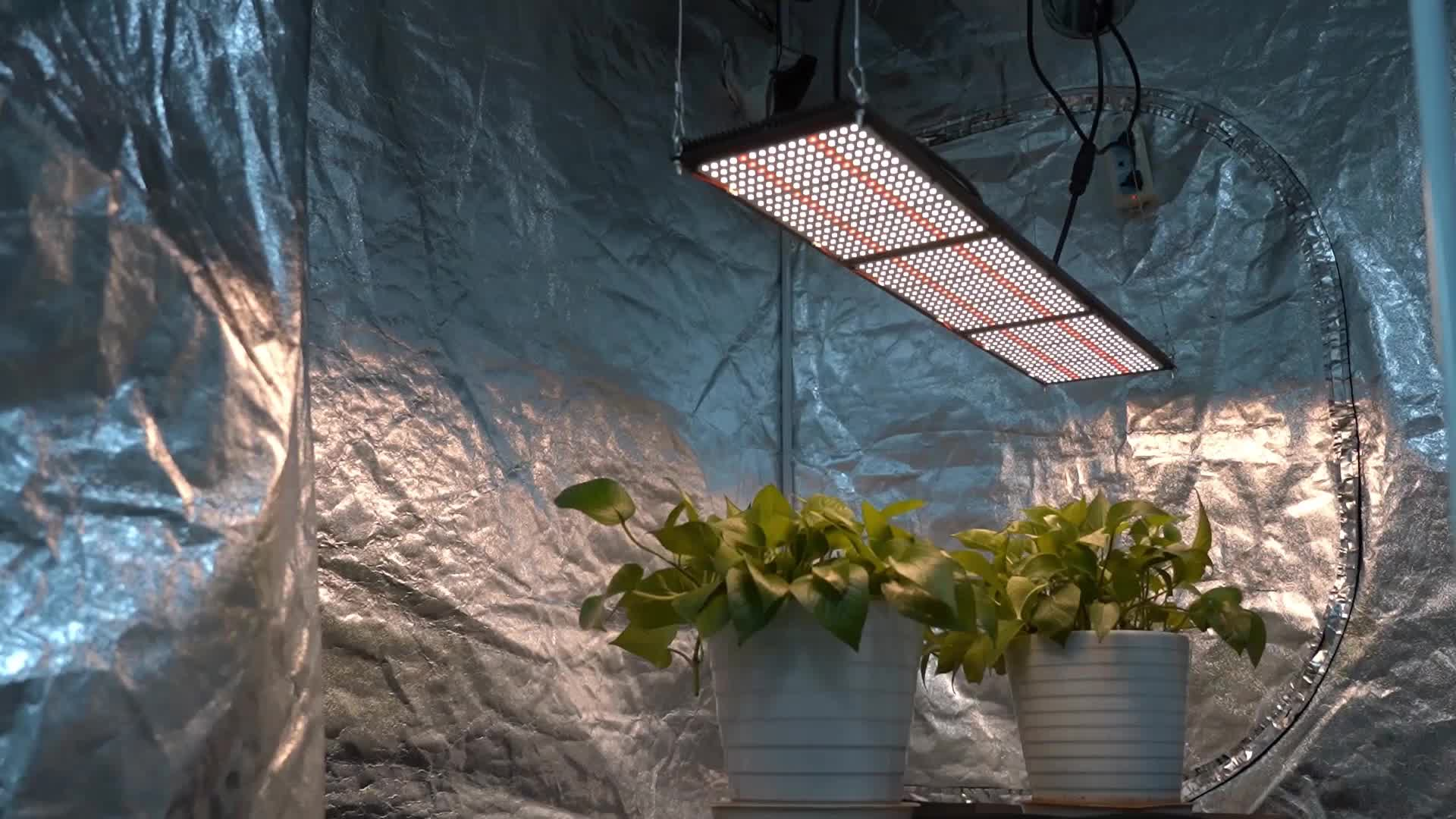 2020 MEIJIU Strips Indoor, Preassembly Greenhouse Aquaponics System Full Spectrum LM301B LM301H 320W Grow LED Light/