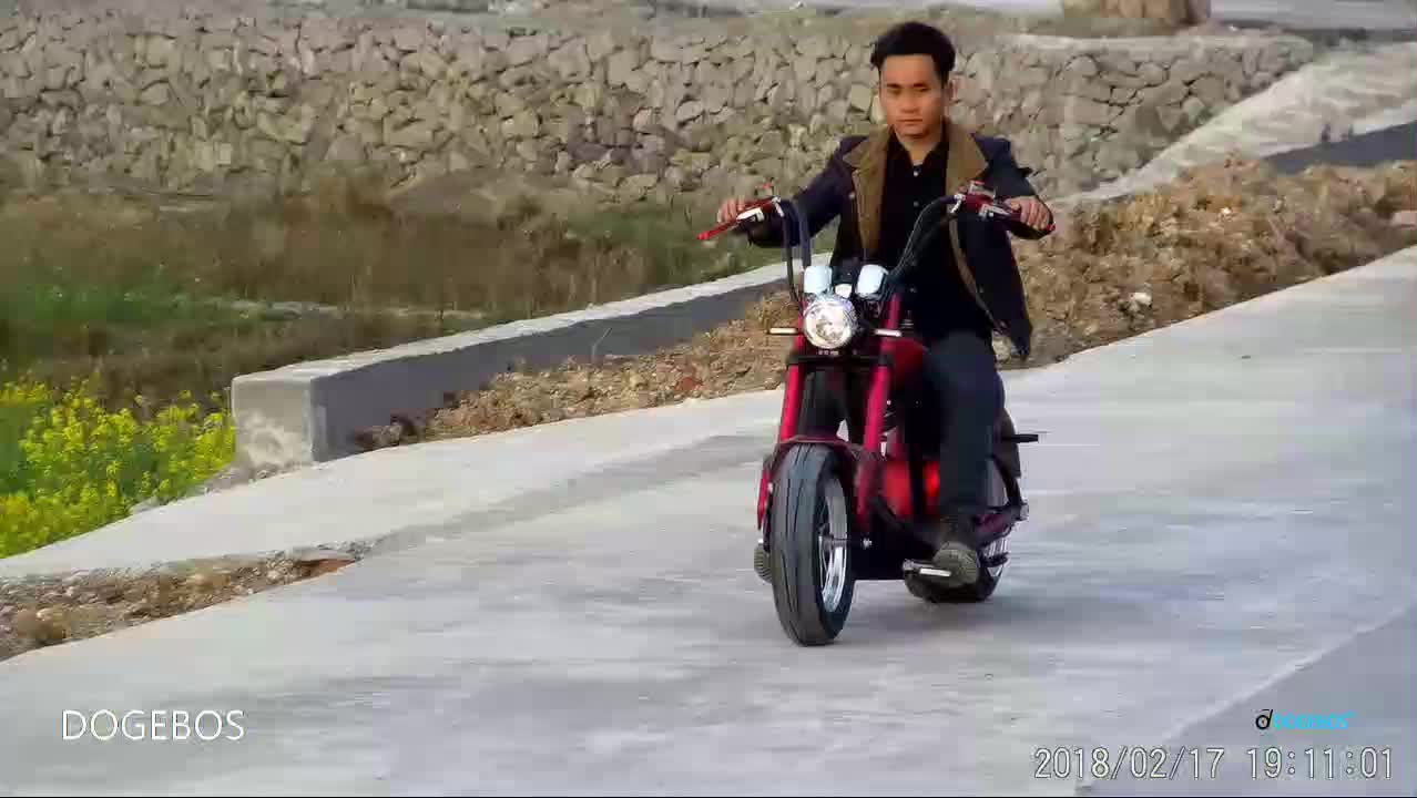 dogebos europe warehouse powerful mobility removable battery citycoco adult electric motorcycle scooter 2000w
