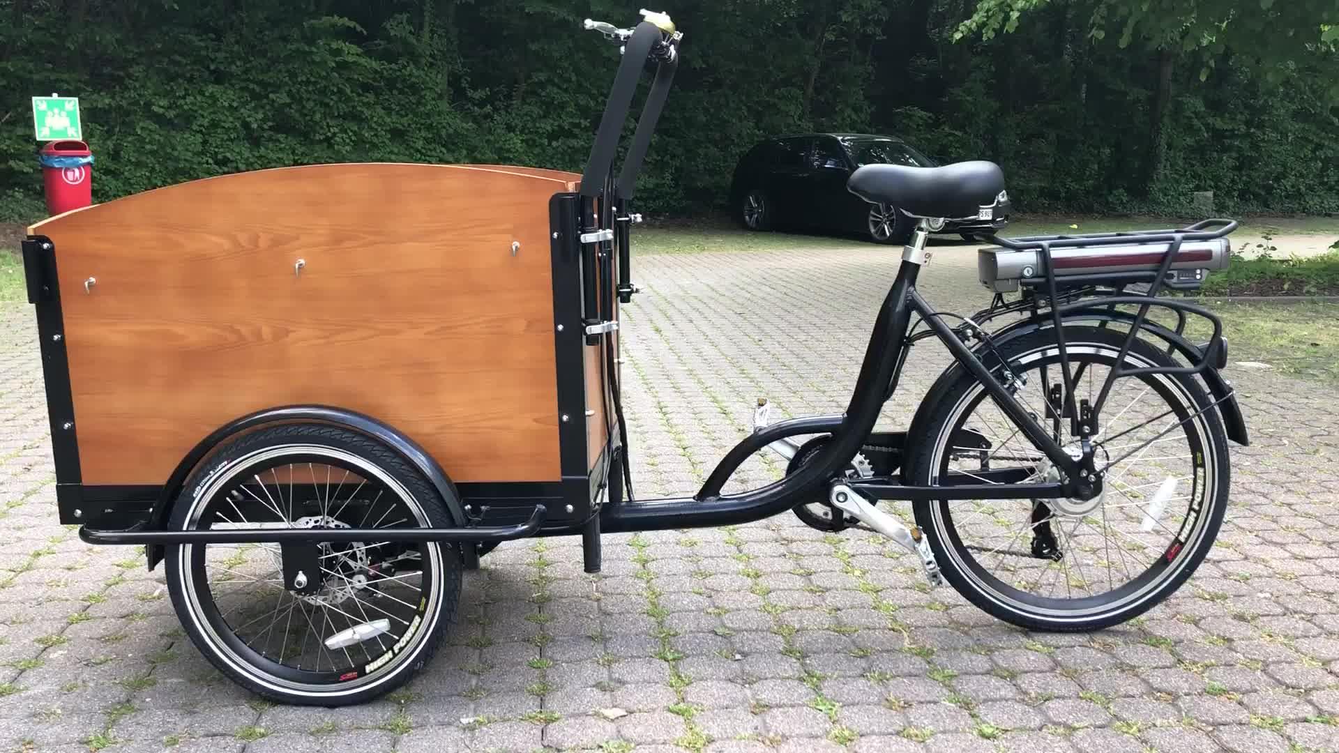 Keranjang Belanja Sepeda Listrik Roda 3 Roda, Pembawa Bahan Bakar Sepeda Kargo Elektrik, Membantu Pedal Sepeda Gunung