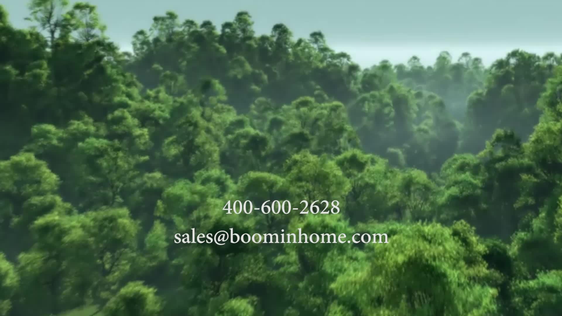 China supplier boomhome hair brush factory oval beech wood boar hair brush