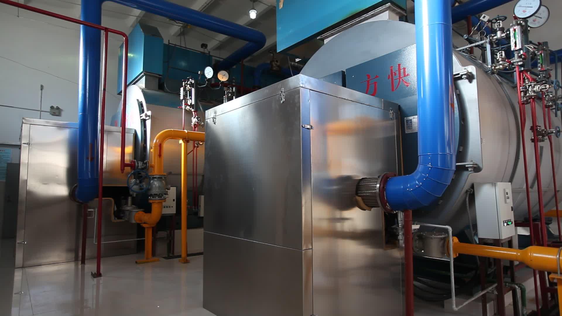 Beste Verkauf 1t-10WM Gewicht Gas Diesel Öl Feuerte Lebensmittel Verarbeitung Dampfkessel Maschine Günstige Preis für verkauf