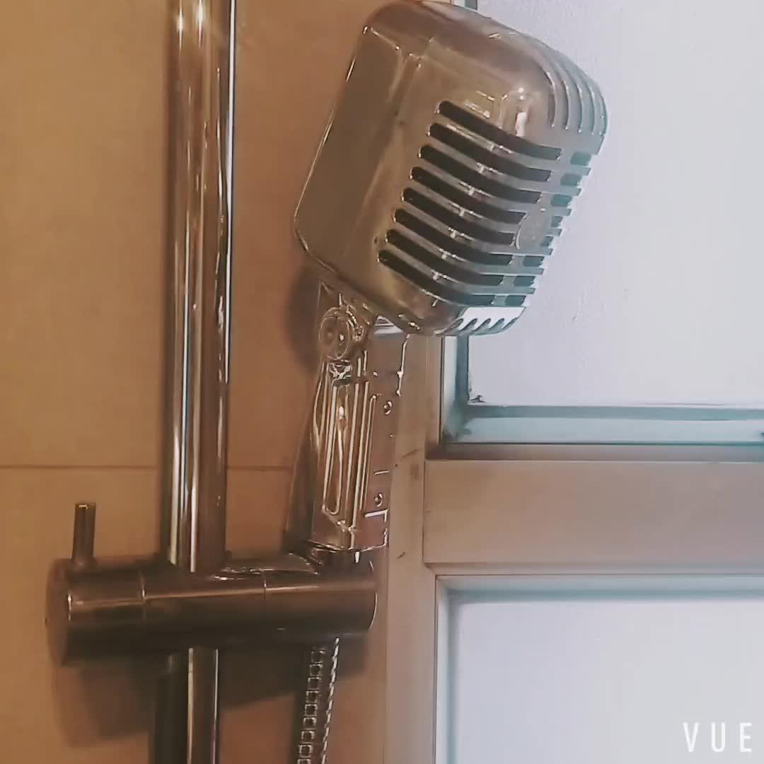 Haute Qualité Micro Vintage de Nouveauté de forme De pomme de douche