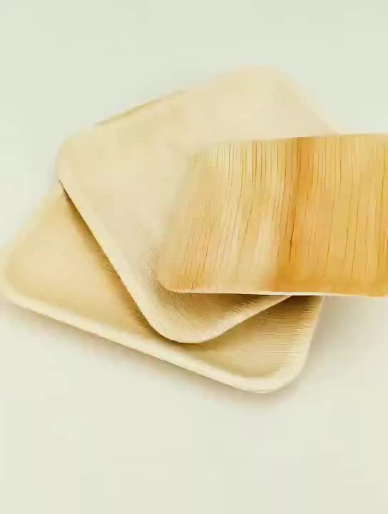 8 Inch square Disposable Areca Leaf Dinnerware palm leave plate biodegradable palm leaf Party Plates