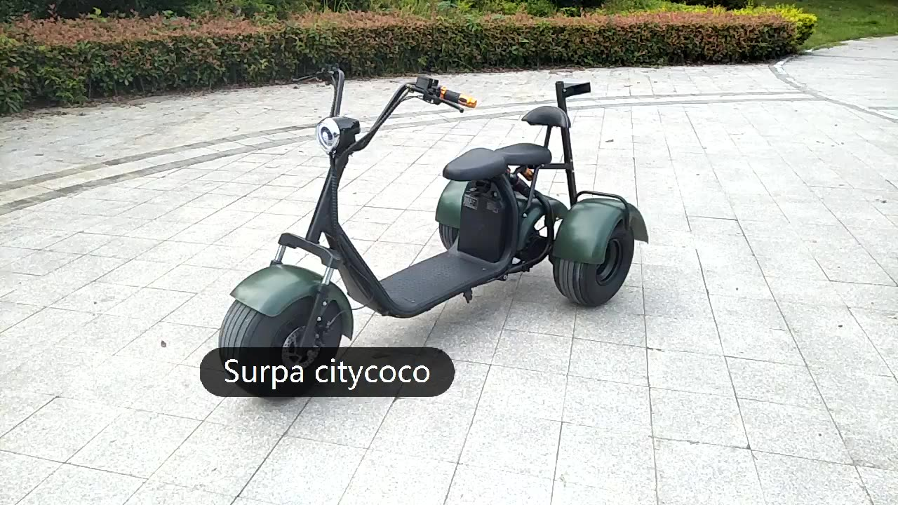 1000w  60v 12ah/ 20ah citycoco 2 removable portable battery  fat tire 3 wheel off road electric scooter with golf bag holder