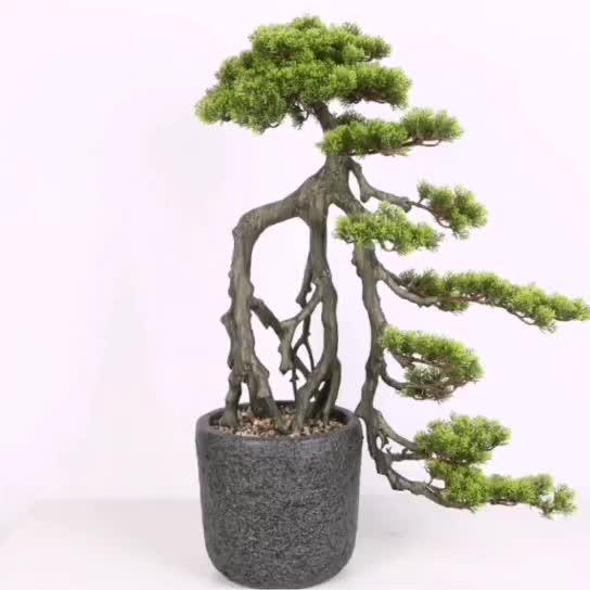 Artificial Milan Banyan Bonsai Tree Aglaia Odorata