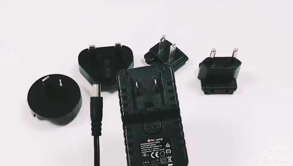 multi plugs 12v 1a best selling switching adapter with ce rohs pse