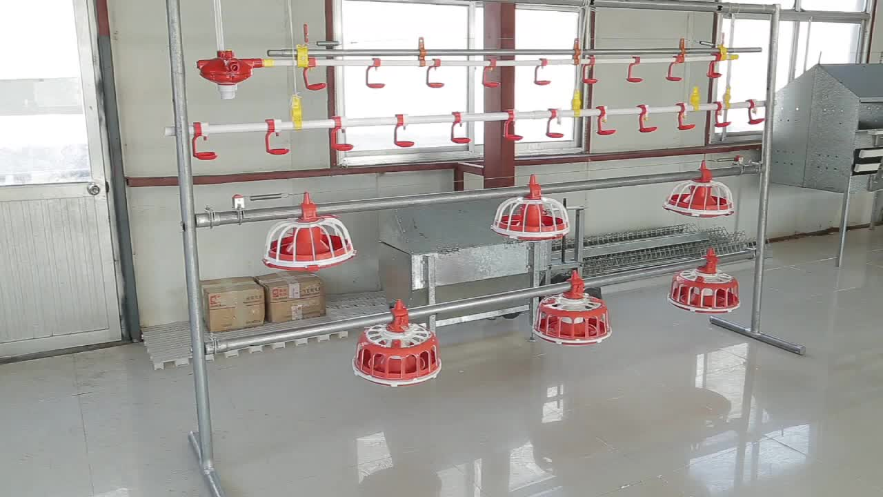 Poultry Farming Equipment Broiler Pan Feeding Line for Sale