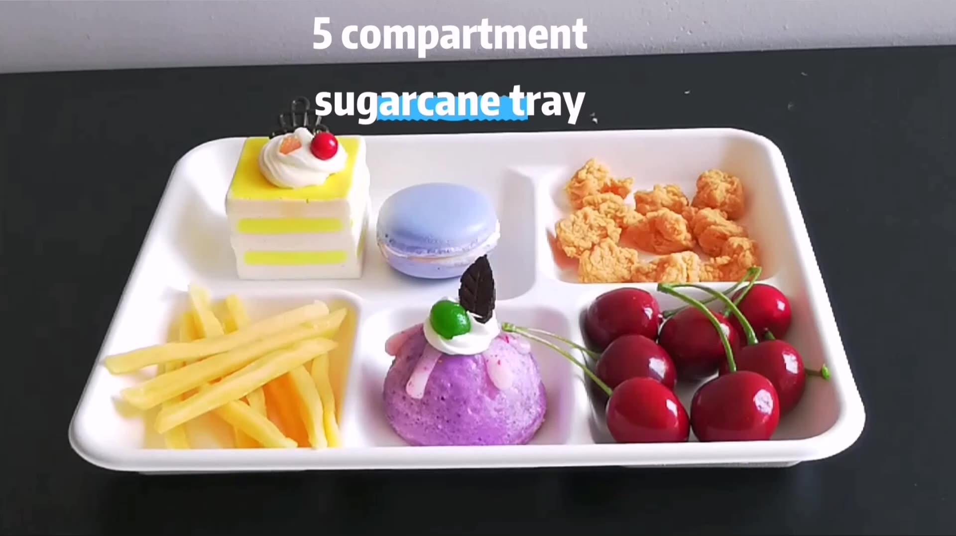 Biodegradabile usa e getta vassoi 5 scomparti canna da zucchero scuola vassoio del pranzo con Coperchio