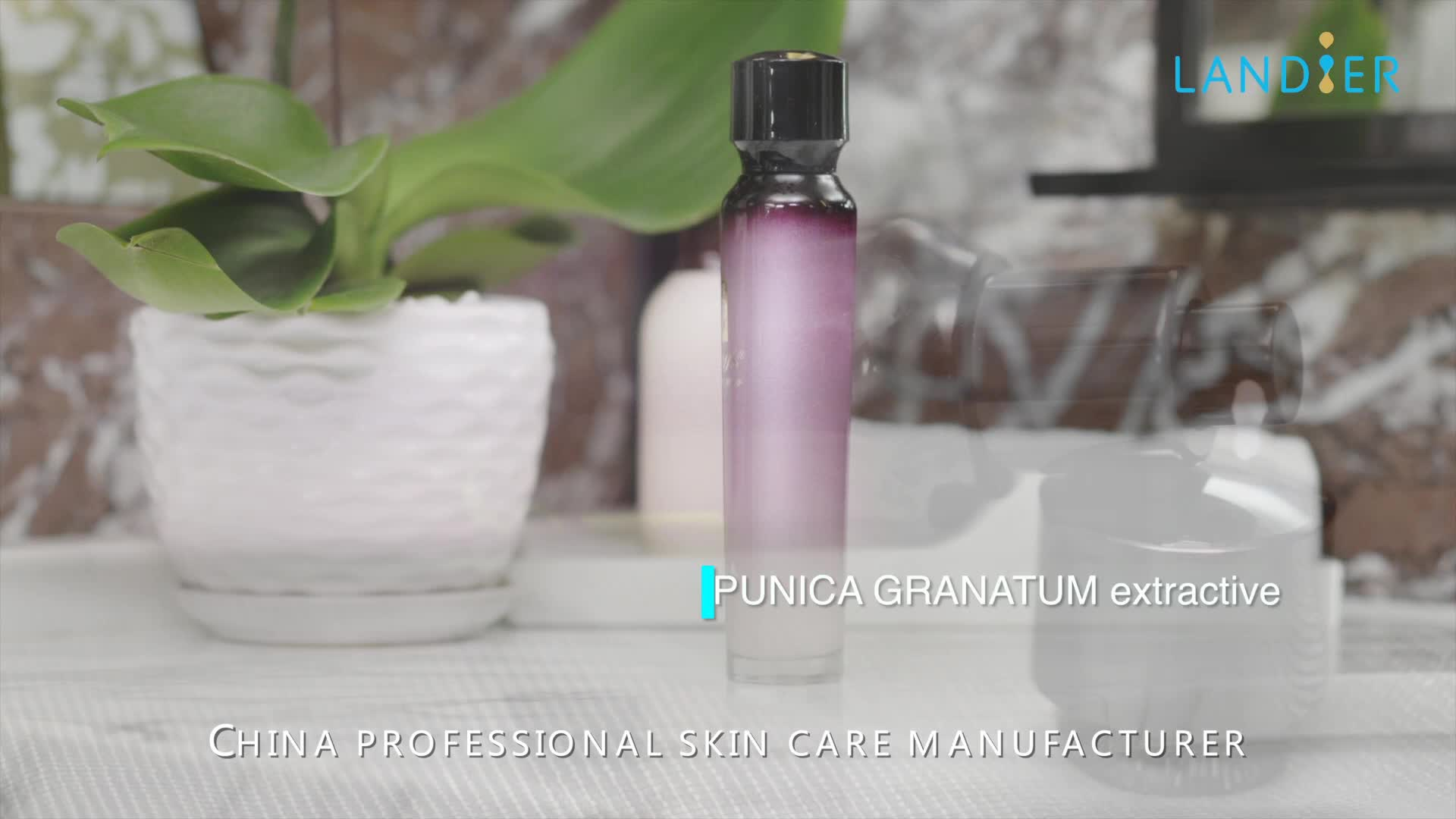 Private Label Skin Care Antioxidant Anti-wrinkles Essence with Hyaluronic Acid for Whitening Skin