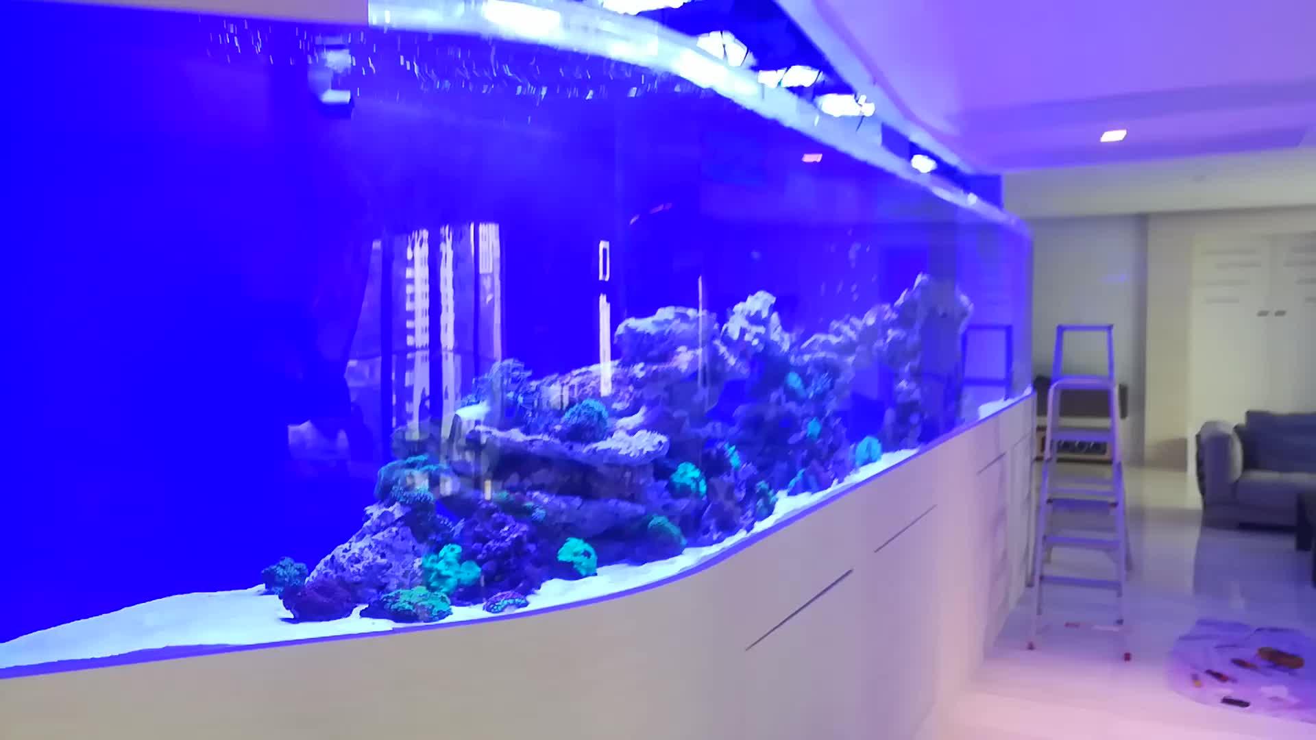 Ctlite G4 wifi スマート制御 led ライト海洋水族館 led 照明