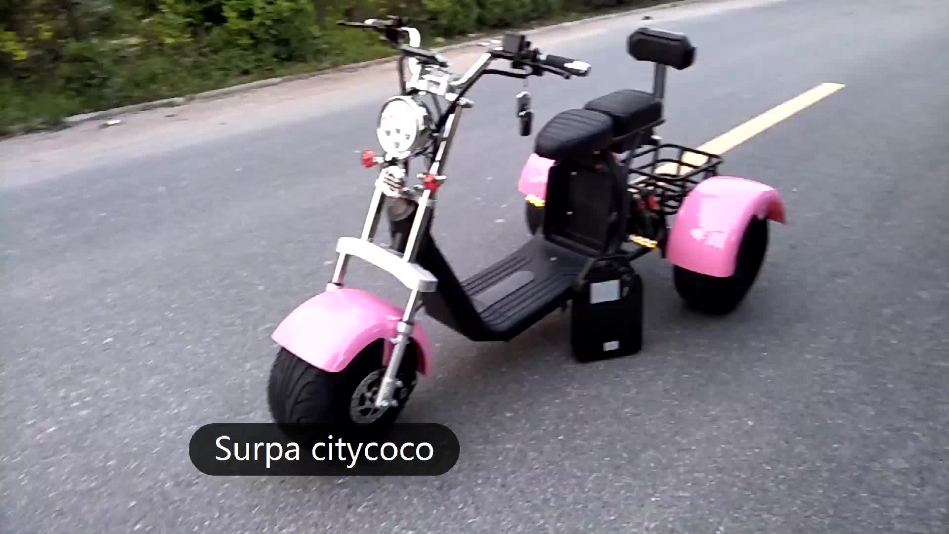 1000w 2000w  citycoco fat tire adult 3 wheel electric scooter street legal/electric golf scooter/electric scooter tricycle