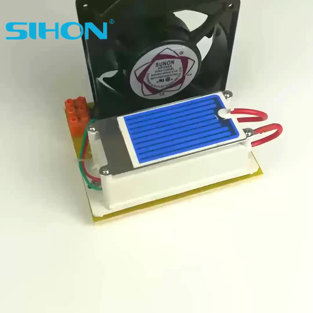 Integrated 3500mg/h Ceramic Ozone Plate with Power Supply Ozone Generator Parts With Fan Cooling