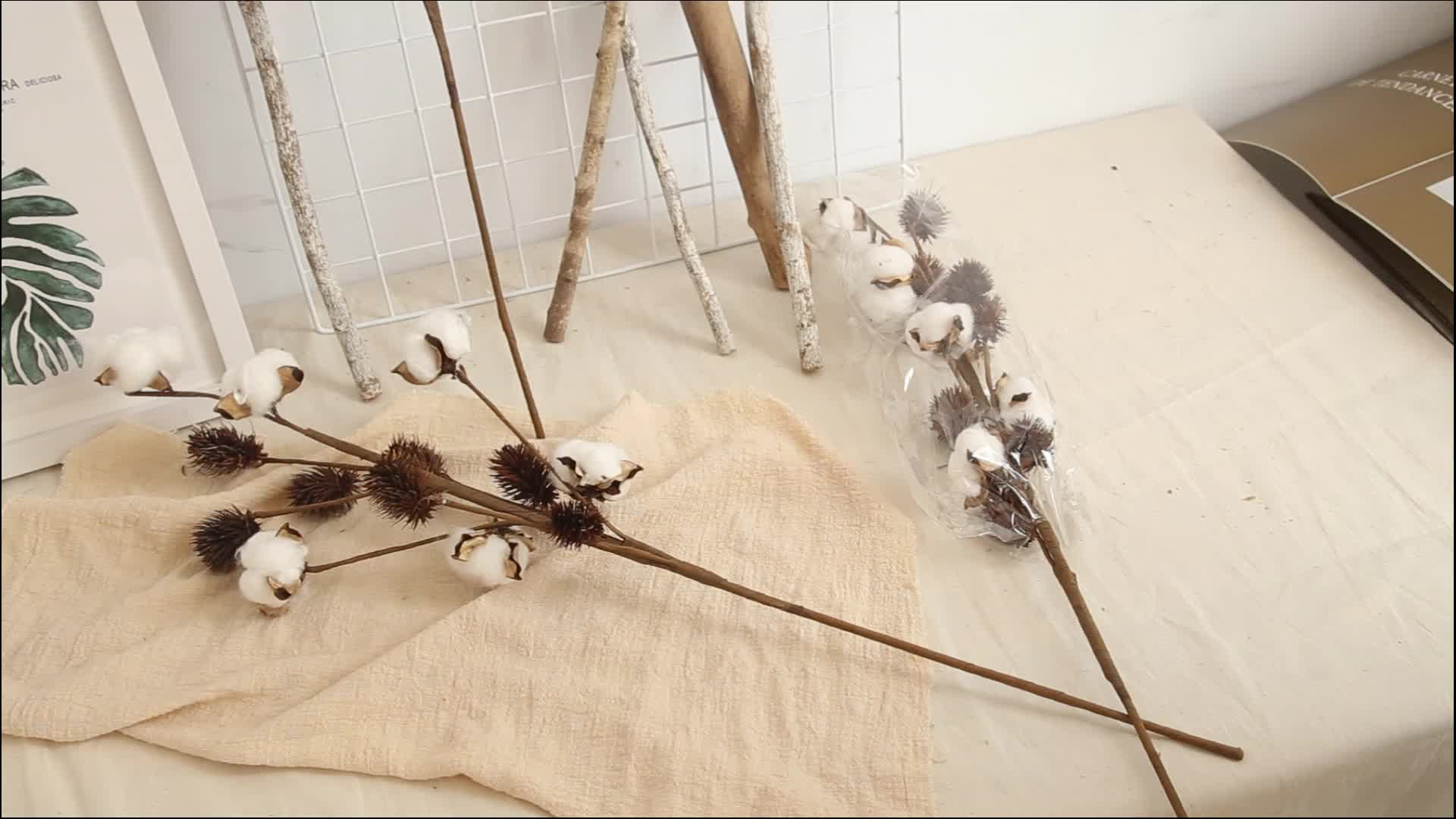 Natural Five Heads Cotton Branches/Stems For Home Supermarket Hotel Decoration