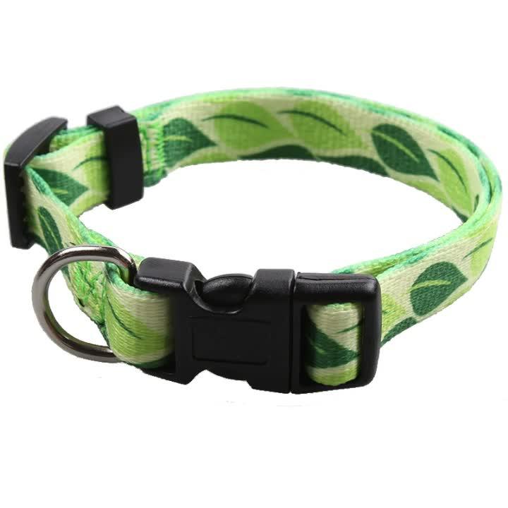 Adjustable heat transfer print dog collar pet with good price wholesale