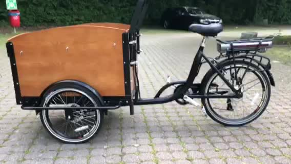 Factory Price Long Warranty 3 Wheel Electric Cargo Bike