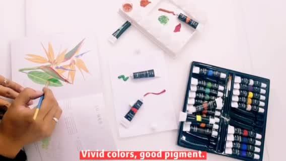 Amazon ขายร้อนชุดบรรจุภัณฑ์24สี12Ml สีอะคริลิคและภาพวาดขนาดกลาง Basic สีอะคริลิค